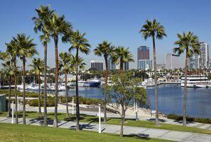 Araba kiralama Palm Harbour, ABD - Amerika Birleşik Devletleri