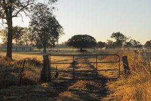 Araba kiralama Morayfield, Avustralya