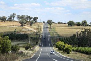 Araba kiralama Mudgee, Avustralya