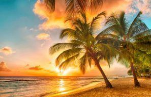 Barbados araç kiralama
