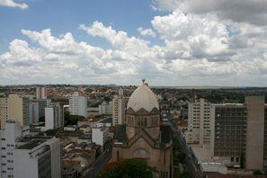 Araba kiralama Araraquara, Brezilya