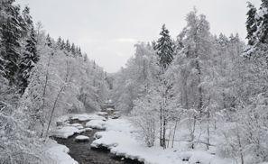 Araba kiralama Nurmijarvi, Finlandiya