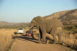 Araba kiralama Klerksdorp, Güney Afrika