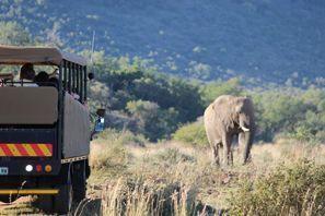 Araba kiralama Vryburg, Güney Afrika