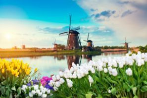 Hollanda araç kiralama